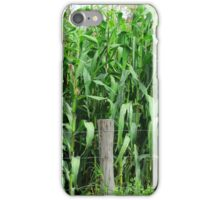 Barbed Wire Fence and Corn Field iPhone Case/Skin