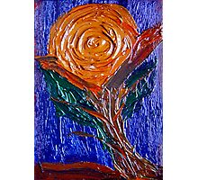 Painted Rose. Photographic Print