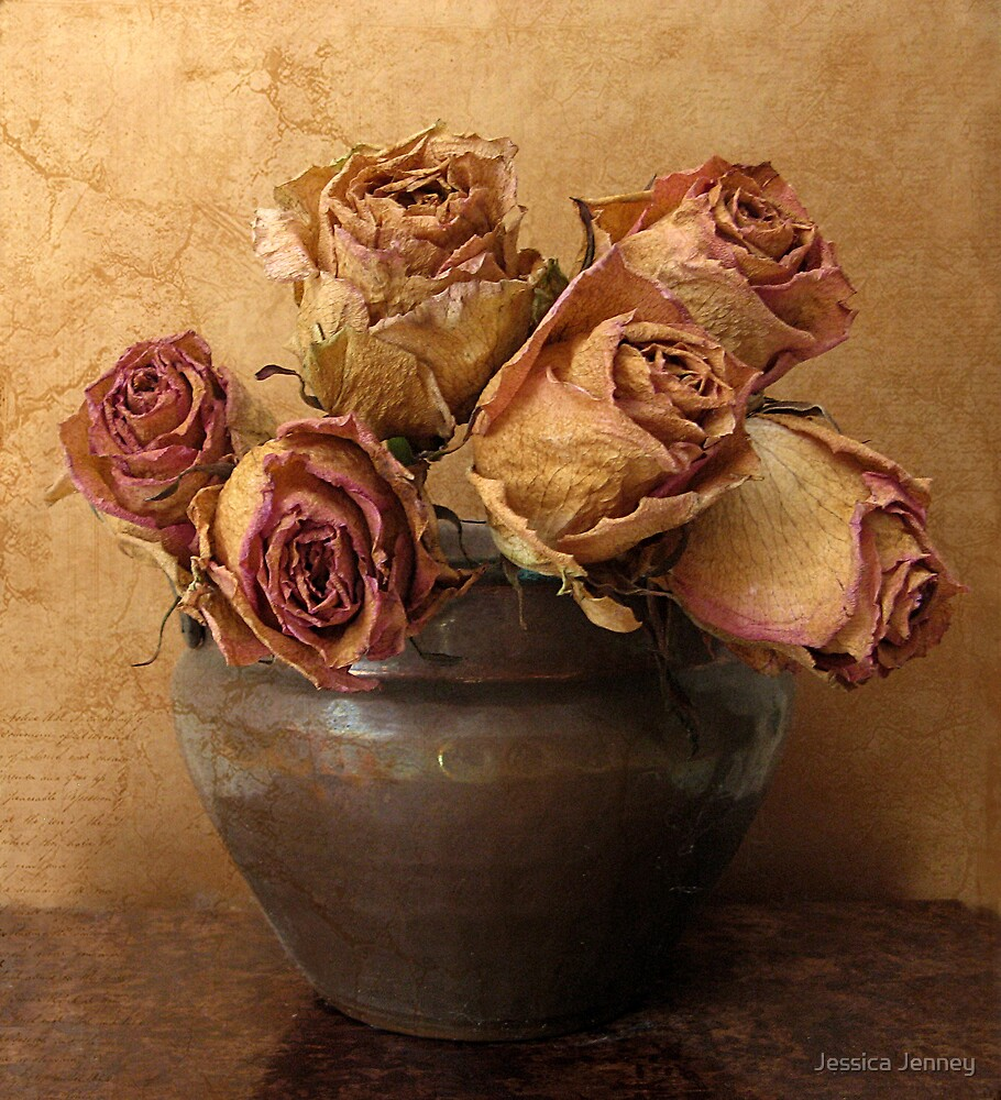 Antique Roses by Jessica Jenney
