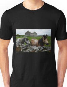 Connemara Ponies and Carron Church Unisex T-Shirt
