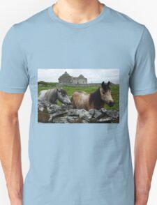 Connemara Ponies and Carron Church T-Shirt