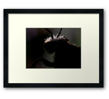 the creature from a horror b-movie Framed Print