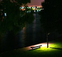 Night Wandering by Barbara  Brown