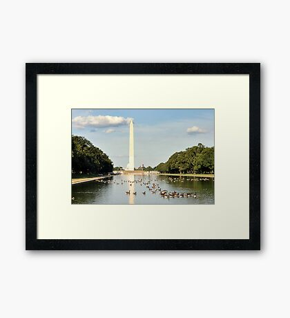Hot Day at the Reflecting Pool Framed Print