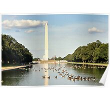 Hot Day at the Reflecting Pool Poster