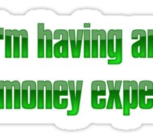 I'm having an out of money experience Sticker