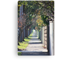 pathway to the burbs Canvas Print