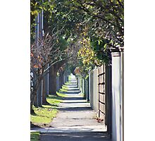 pathway to the burbs Photographic Print