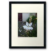 Wonderful White Framed Print