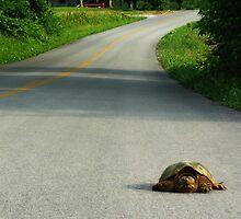 On The Road Again.... by Karen  Helgesen