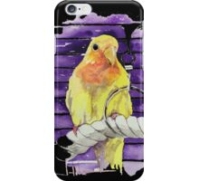 Peach Faced Lovebird iPhone Case/Skin