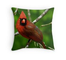 """Male  Northern Cardinal"" Throw Pillow"