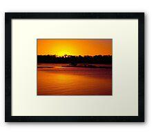 The Golden Touch Framed Print