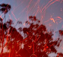"""Dancing Sparks"" by debsphotos"