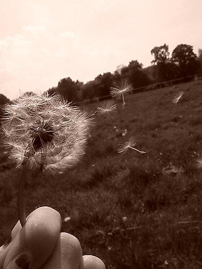 Make a Wish by Lorna Boyer