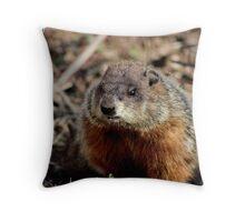 Groundhog II Throw Pillow