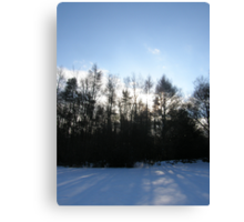 Blue Snow Canvas Print