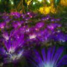 Purple Forest by kjezt