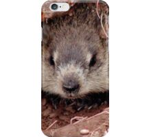 Groundhog III iPhone Case/Skin