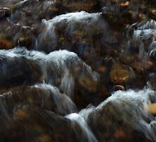 Babbling Brook by Stan Wojtaszek