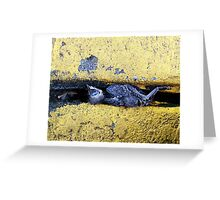It was the crack that got him! Greeting Card