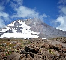 The Mount Hood Timberline by awanderingsoul