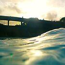 sunny pool by Anitavr