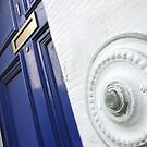 our front door by armadillozenith