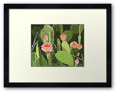 Prickly Pear by Carole Boyd