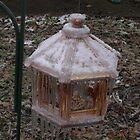 Frozen Feeder by Spyder761