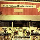 """""""A COUNTRYFIED GALLERY""""... prints and products by © Bob Hall"""
