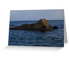 Rock Sea Creature Greeting Card