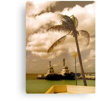 Bonaire, Dutch Antilles Metal Print