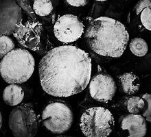 Clean cut by markphotos1964