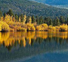 Aspen reflections by John Weakly