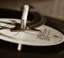 Retro Vinyl by Trish Woodford