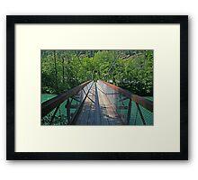 Bridge over the Skagit River Framed Print