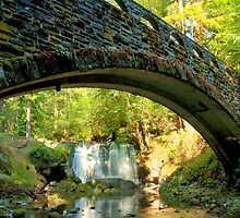 Bridge Over Whatcom Waters by Appel