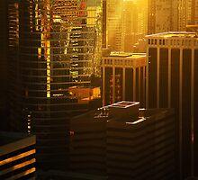 Sun Haze by Olga Zvereva
