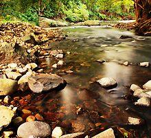 Currumbin rock pools 2 by Tanya  Snowden