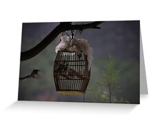 Mother feeding her captive babies Greeting Card