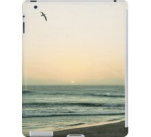 Lonesome Flight iPad Case/Skin