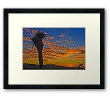 Joshua Tree Silohette Sunset Framed Print