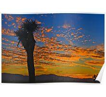 Joshua Tree Silohette Sunset Poster