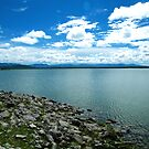 Overlooking Balmorhea Lake by R&PChristianDesign &Photography