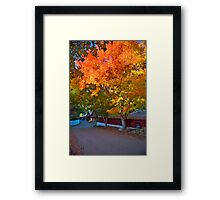 Snowline Apple Orchard Framed Print