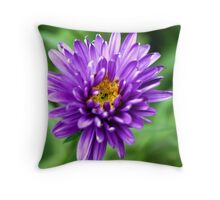 Purple Astor Throw Pillow