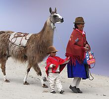 HEADING HOME - ZUMBAHUA by Michael Sheridan