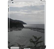 Port iPad Case/Skin