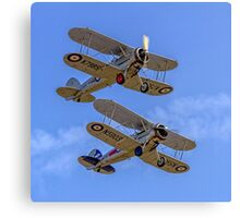 A pair of Gloster Gladiators Canvas Print
